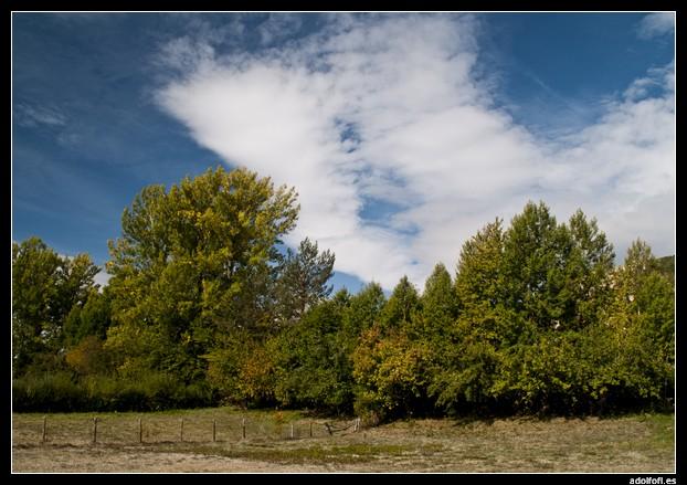 2009-10-04-Cogiendo-manzanas